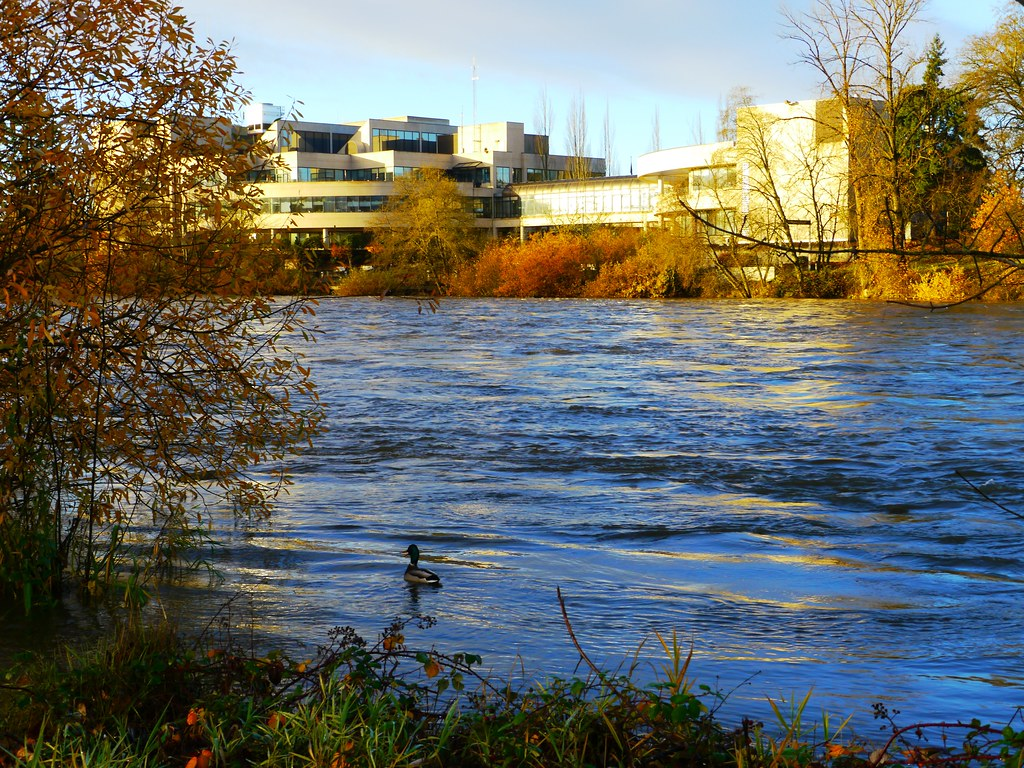 Willamette River And Eweb Building In Eugene Oregon Flickr