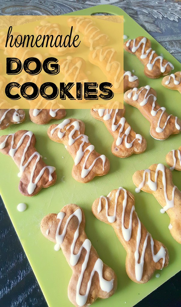 Homemade peanut butter pumpkin dog cookies
