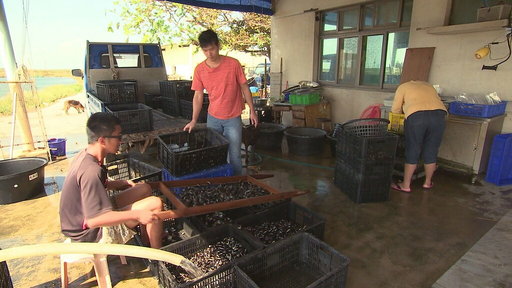 931-3-03不少七股養殖漁民都是承租戶,擔心綠能帶來的高租金誘因,會促使地主哄抬租金,讓他們難以再承租下去。