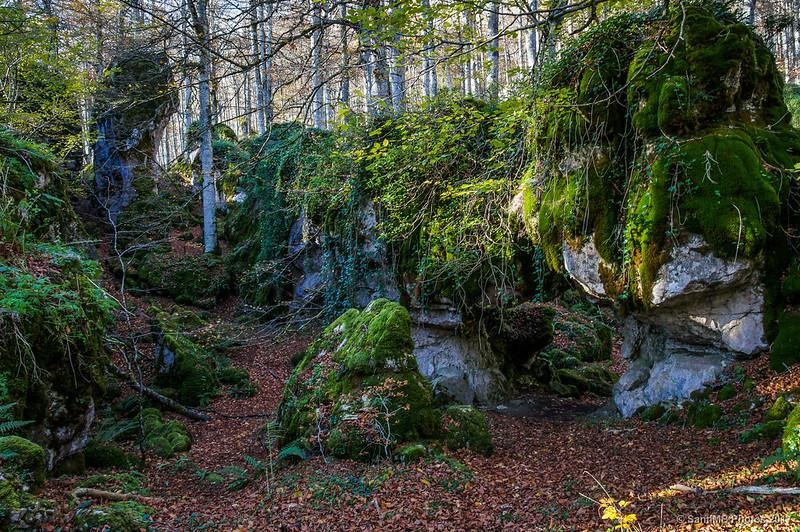 Al otro lado de El Arco en el Bosque Encantado de Urbasa