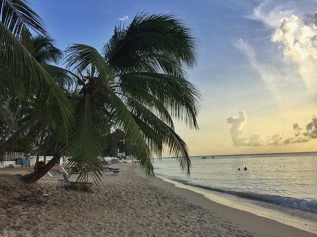 Una playa cualquiera de Barbados al atardecer (Islas del Caribe en crucero)
