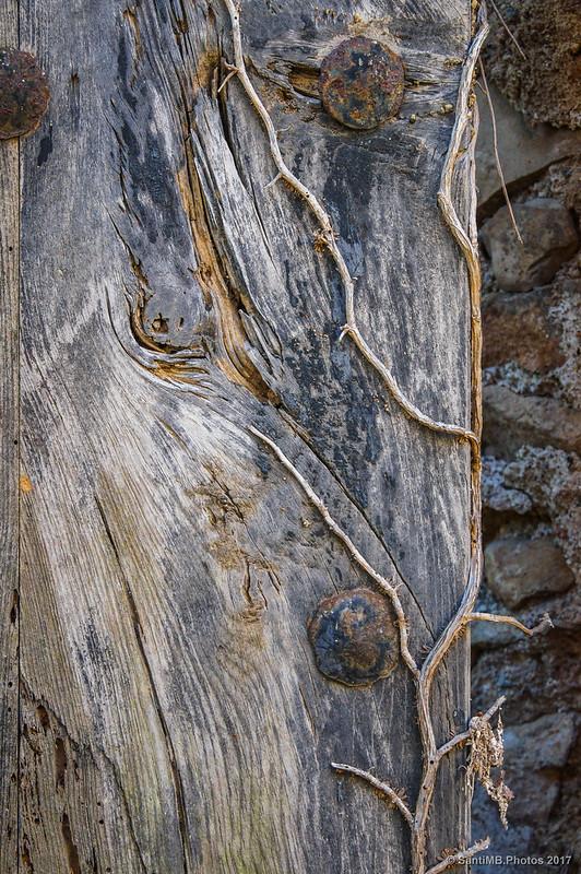 Detalle de una puerta en la Casa 2 de Marmellar