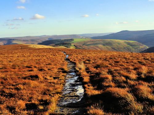 Crossing Rowlee Pasture