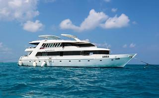 MV Amba buceo vida a bordo Maldivas