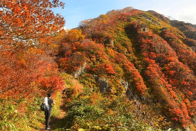 朝日連峰縦走登山 小朝日岳の紅葉