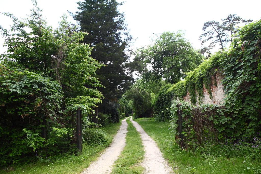 在格德勒影展開幕前一天,我散步到格德勒宮的偏僻角落,是宮殿後方尚未修建的部分,兩條路跡,相映成趣,荒靜美麗。