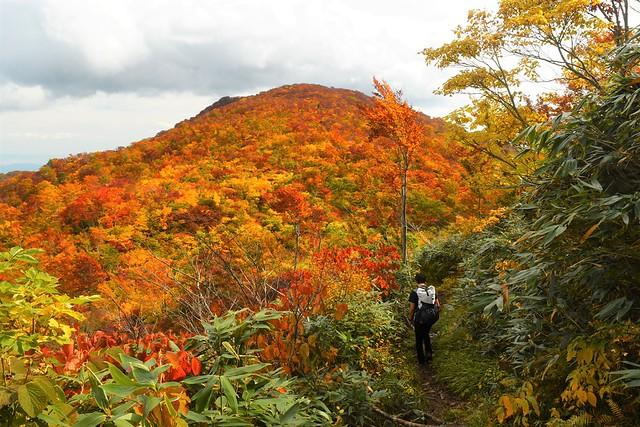 朝日連峰・鳥原山の紅葉