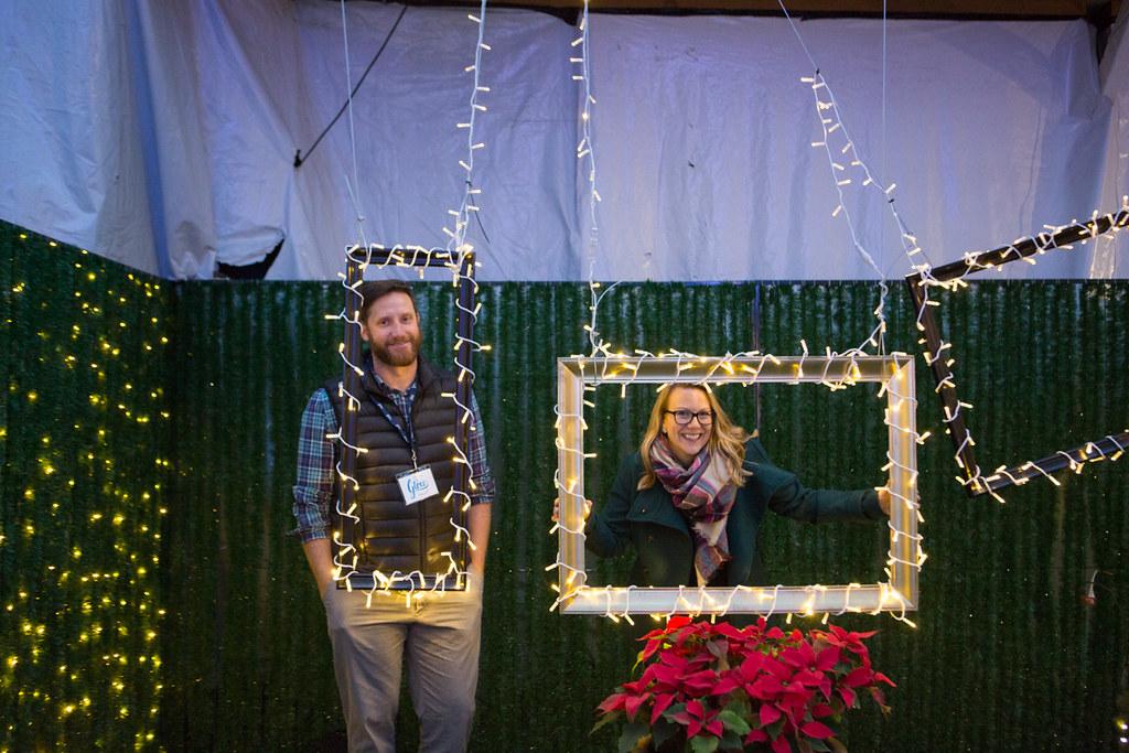 Hanging frames at Glow Christmas at Milner Gardens
