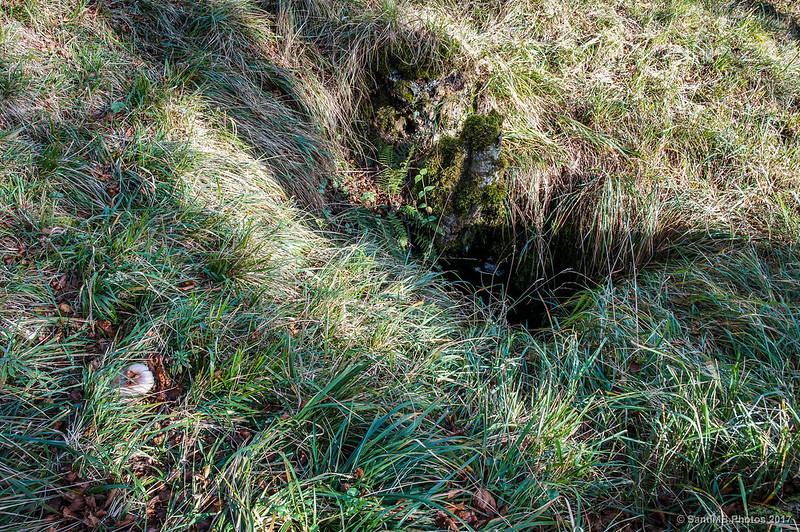 Entrada a una sima en el Bosque Encantado de Urbasa