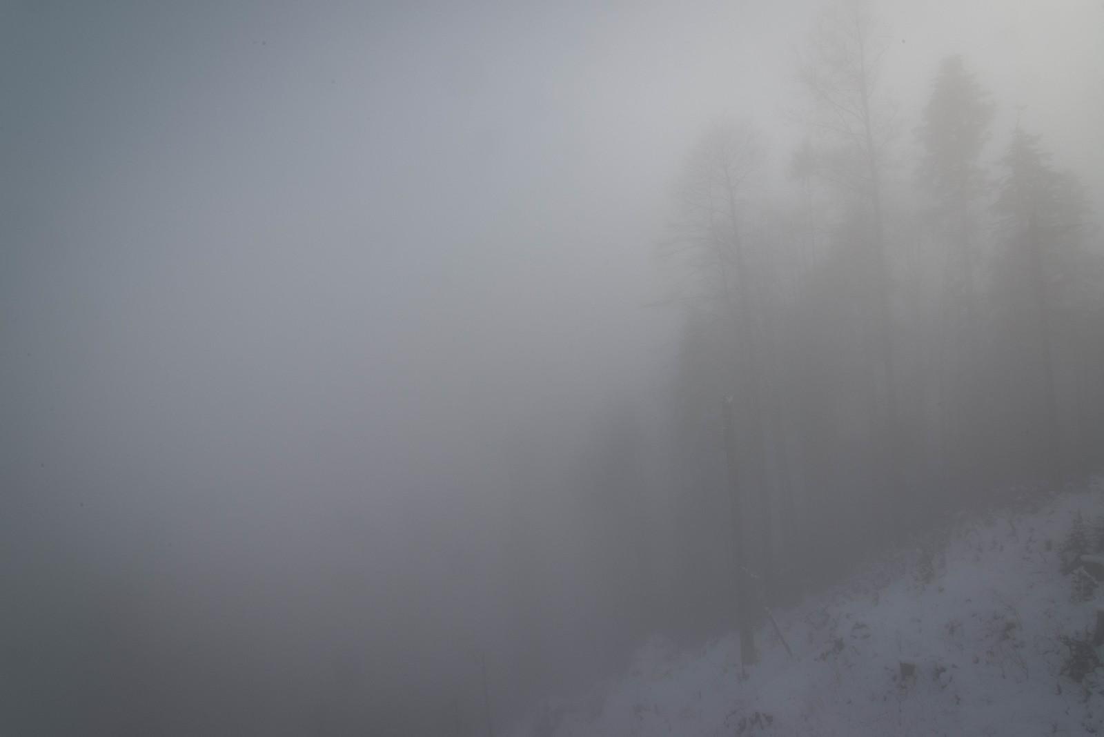 Krienseregg im Nebel | by rdie