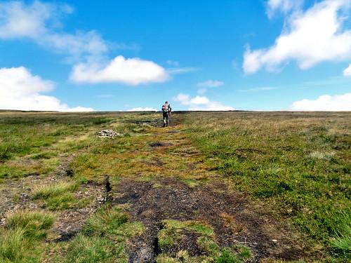On Barley Moor