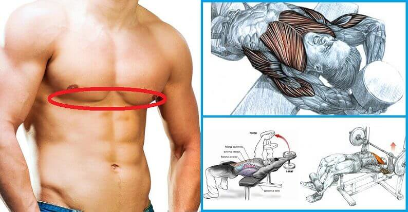 The Best Lower Chest Workout For Defined Pecs