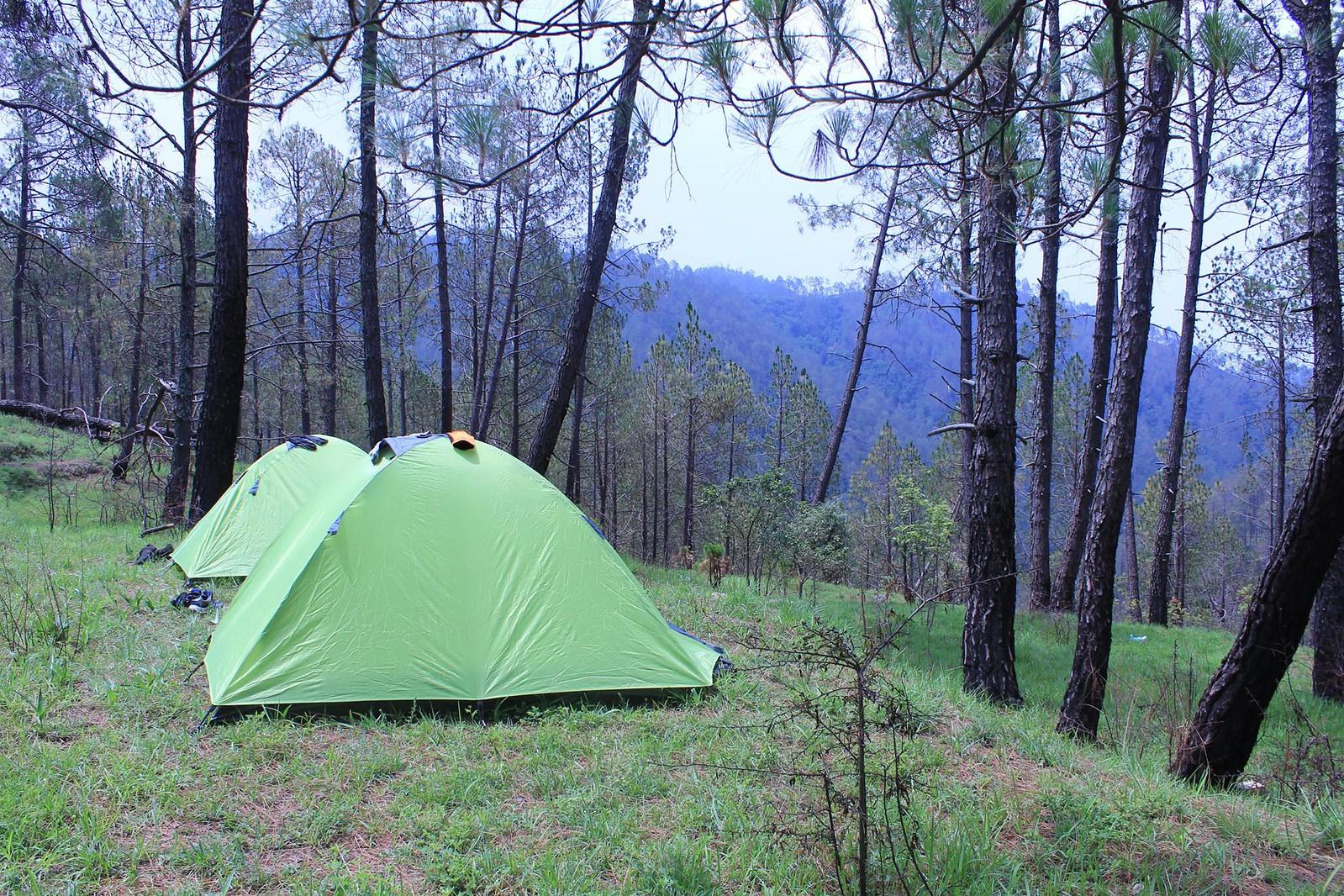 Kausani Camping