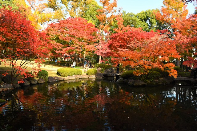 大田黒公園 池の周りの紅葉