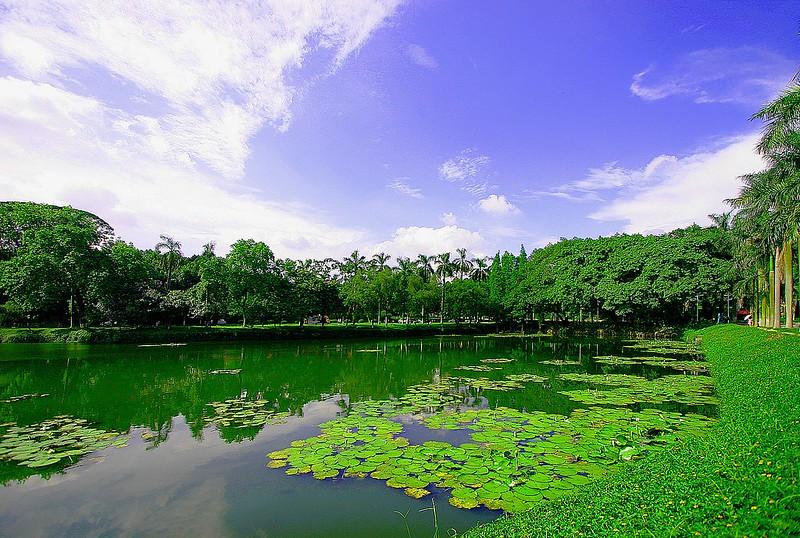 江蘇洪澤湖,圖片來源:維基百科(CC BY-SA 3.0)。