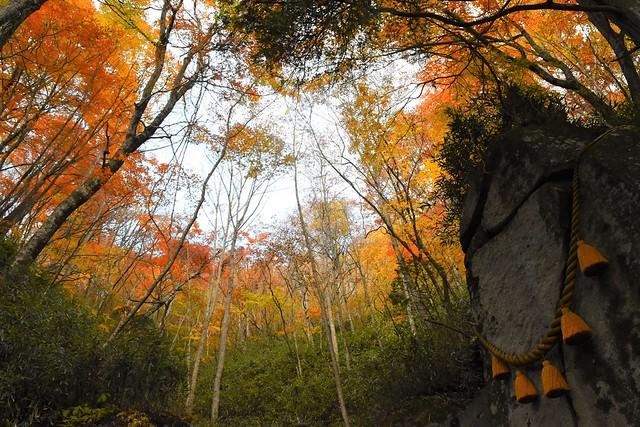 石割神社の紅葉