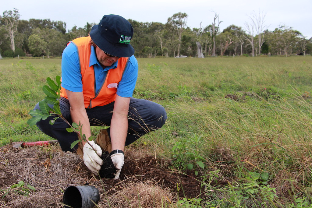 Greenfleet Australia(CC BY-NC-ND 2.0)