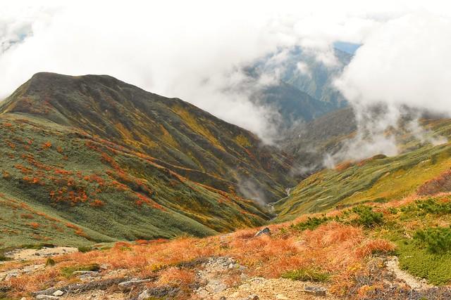 以東岳直下の紅葉