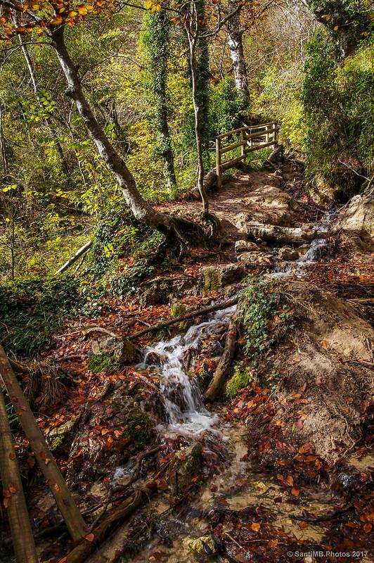 Un arroyo por el camino al Nacedero del Urederra
