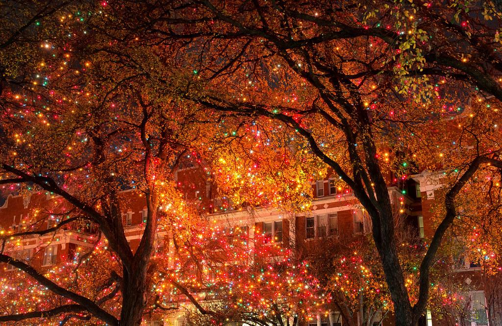 Kaleidoscope of Light | Christmas lights at The University o… | Flickr