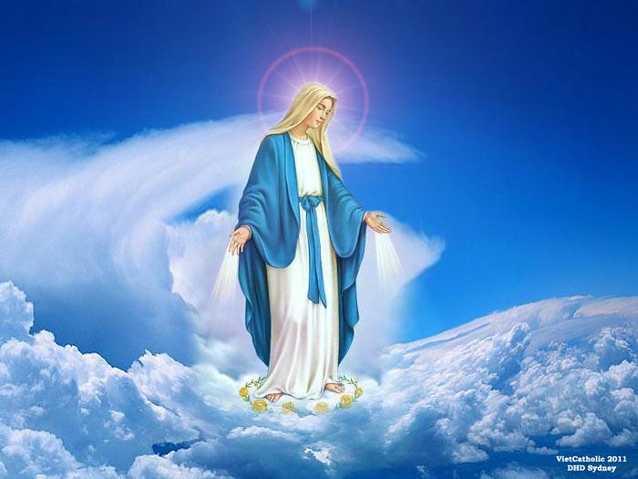 Lễ Đức Maria Vô Nhiễm Nguyên Tội