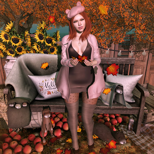 {Blog 314} Fall Fever | by veronica gearz