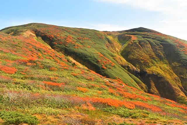 朝日連峰・寒江山の紅葉