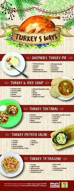 Turkey 5 Ways infographic
