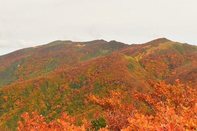 以東岳の紅葉