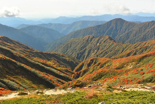 朝日連峰 谷間の紅葉