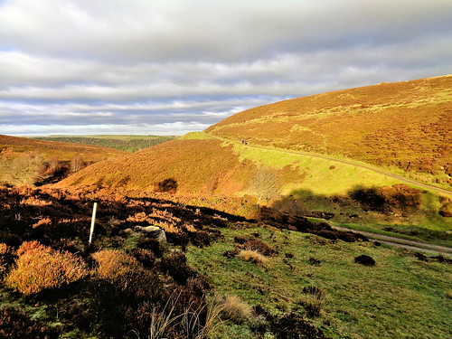 The path skirting around Range Moor Top