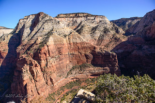 Atop Angels Landing | by shirley319