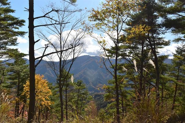 御正体山登山道から丹沢の展望