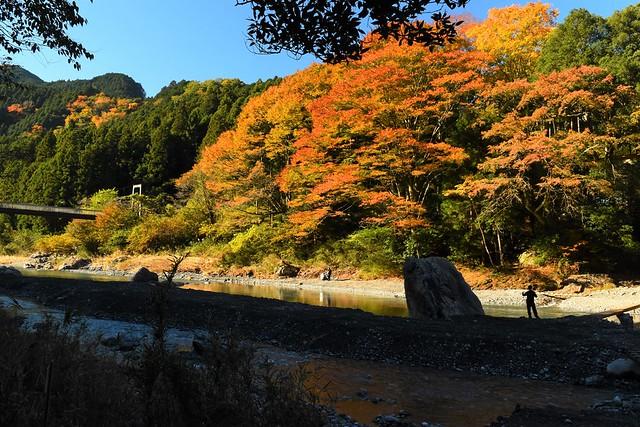 紅葉の御岳渓谷で釣りをする人
