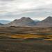Road N°1 - Iceland