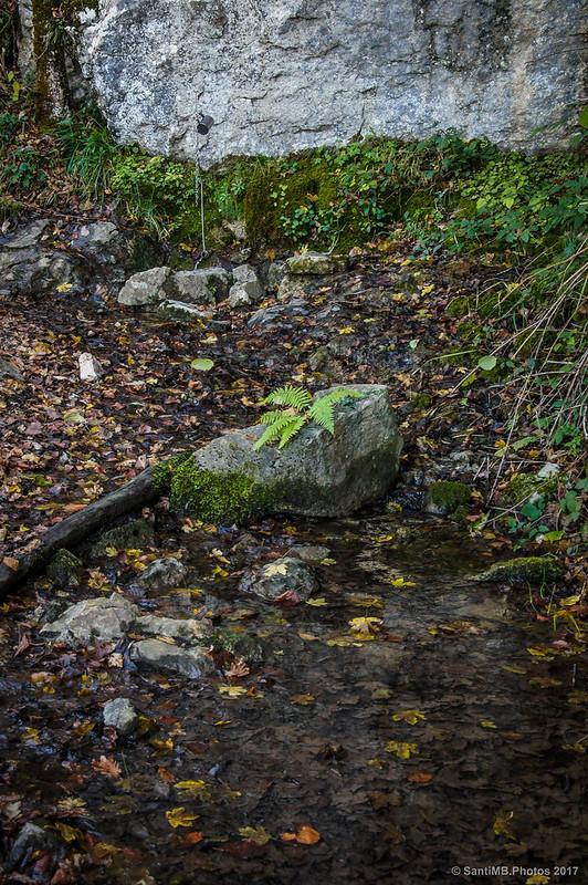Fuente en el camino al Lago Lareo