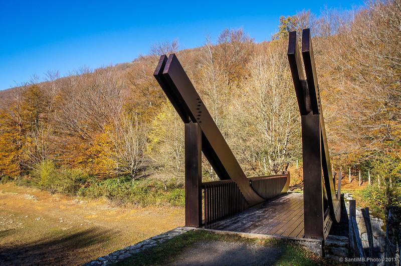 Curioso puente de madera junto al Lago Lareo