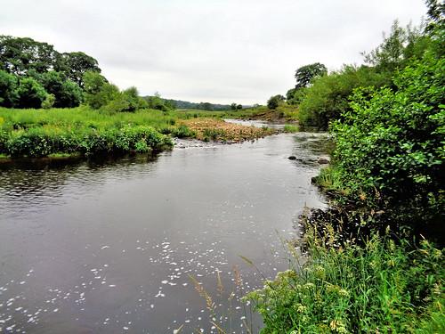 The River Calder