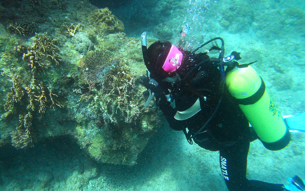 黃小莫跟著小琉球海洋志工隊下水淨海,看見珊瑚被垃圾覆蓋的白化死亡危機。(照片提供/小琉球海洋志工隊)