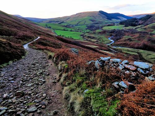 Descending through Blackley Hey