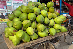 Coconuts for sale