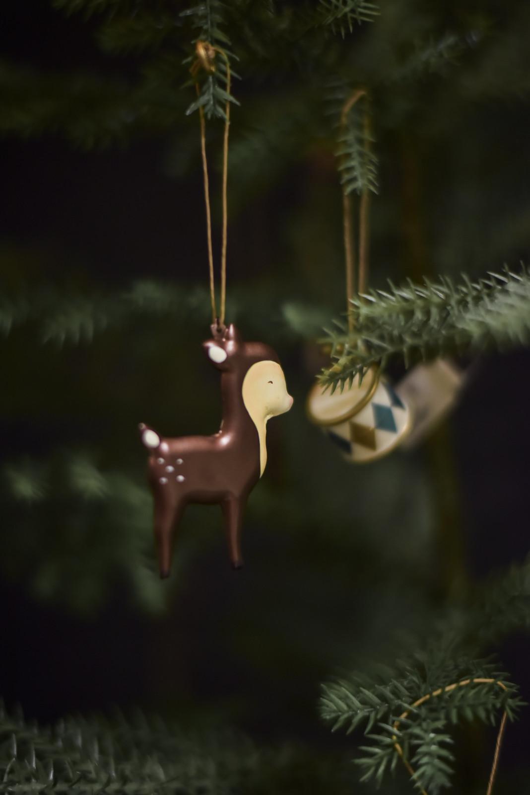 bambi korgcenter