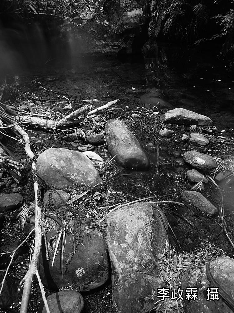 7_許許多多有彩色鰕虎的小溪,都面臨隨時被人為改變的黑白夢魘。(攝影:李政霖)