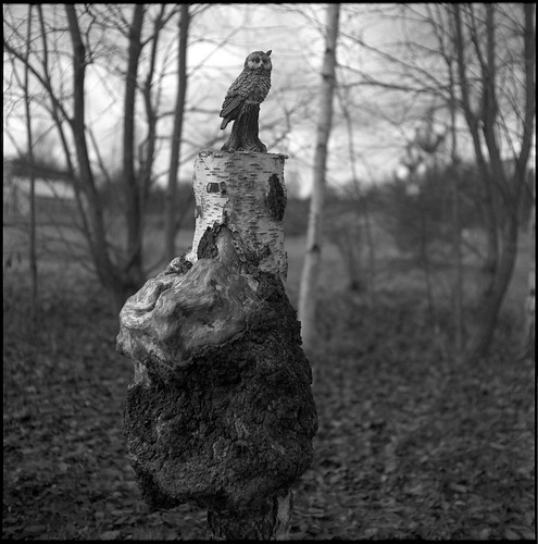 figurine and disfigurement | by john grzinich