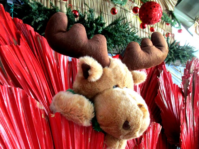 Payung Cafe reindeer