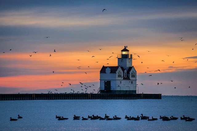 Lighthouse, Sunrise, Geese, Sea Gulls, Kewaunee,