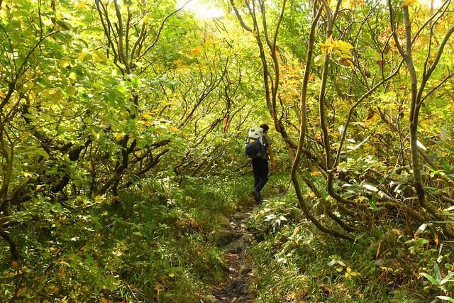 以東岳 直登コース入口