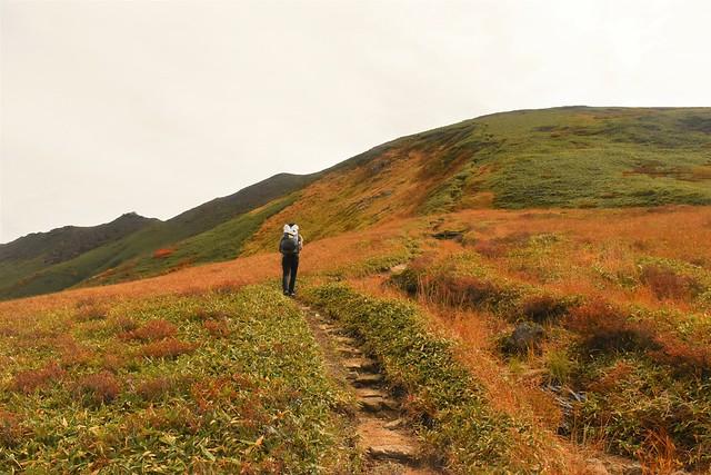 以東岳 紅葉登山