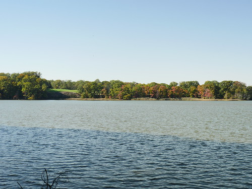 Photo of Bohemia River State Park taken from the water