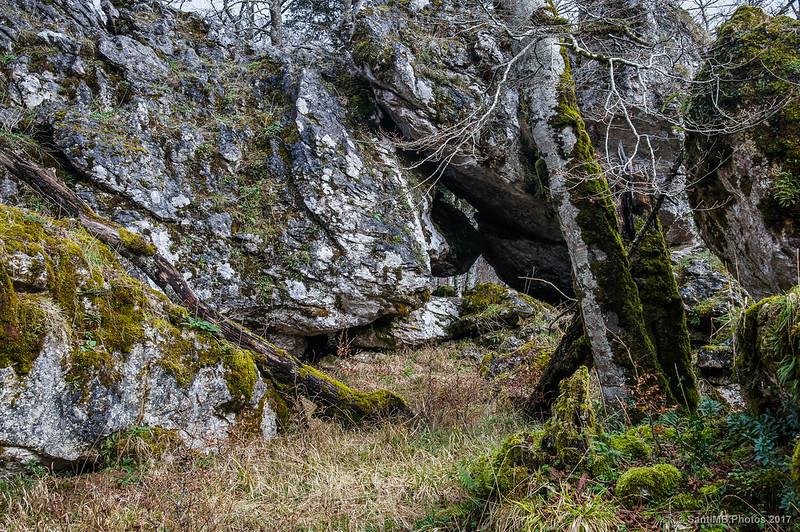 Rocas del Bosque Encantado de Urbasa
